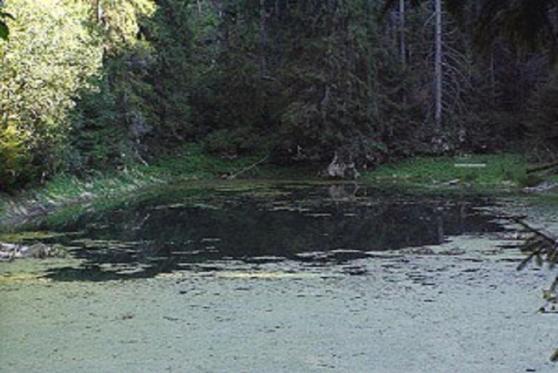 Ost-jazera-c-2
